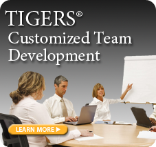 customized-team-development