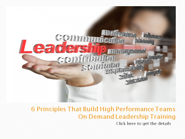 6 Principles on demand leadership training